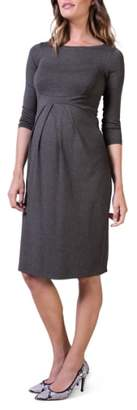 Isabella Oliver Ivybridge Jersey Maternity Dress