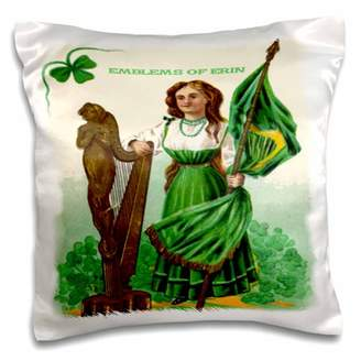 3dRose Emblems of Erin (Vintage) - Pillow Case, 16 by 16-inch
