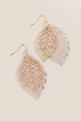 francesca's Colbie Leaf Drop Earrings - Rose/Gold