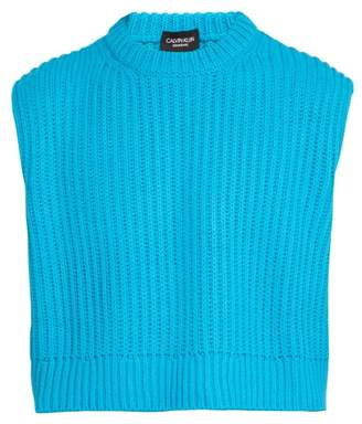 Calvin Klein Cropped Ribbed Knit Sleeveless Sweater - Mens - Blue