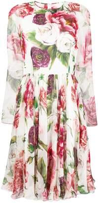 Dolce & Gabbana rose print pleated dress