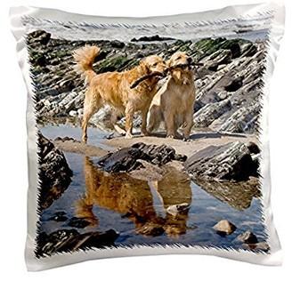 Golden Retriever 3dRose Two dogs at a beach - NA02 ZMU0173 - Zandria Muench Beraldo, Pillow Case, 16 by 16-inch