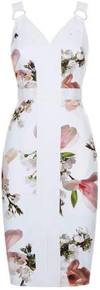 Ted Baker Irasela Harmony Bodycon Dress