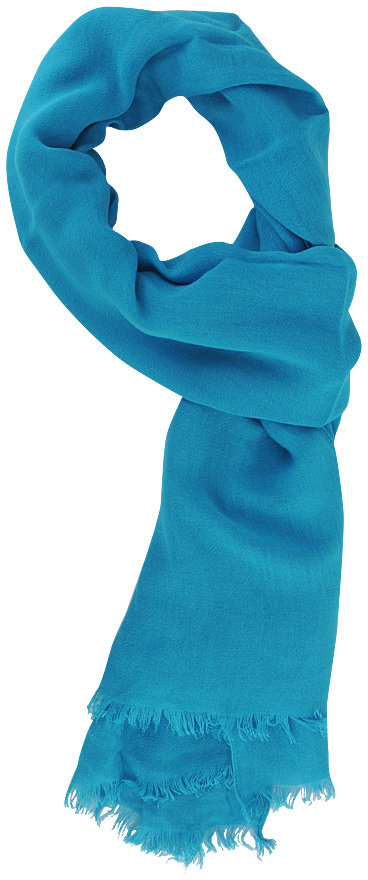 Style deals Frayed Woven Scarf