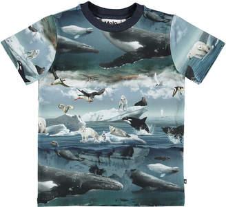 Molo Ralphie Arctic Landscape Short-Sleeve Tee, Size 4-10