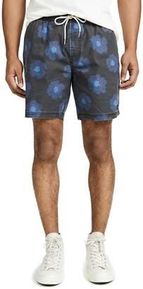 Barney Cools Black Hibiscus Amphibious 17 Shorts