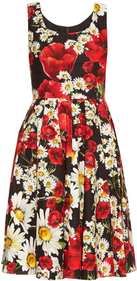 DOLCE & GABBANA Poppy and daisy-print cotton dress $1,238 thestylecure.com