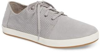 Toms Payton Perforated Sneaker (Men)