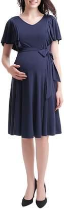 Kimi and Kai Kimi & Kai Rhea Tie Maternity/Nursing Skater Dress