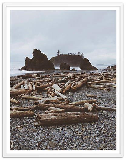 Rocky Beach Driftwood - Kevin Russ - 40