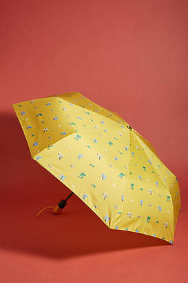 Anthropologie 52 Conversations by Colloquial Umbrella