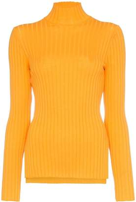 Sjyp high neck long sleeve fitted rollneck