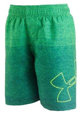 Boy's Fader Icon Volley Shorts