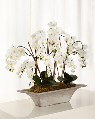John-Richard Collection Armature Orchids Faux-Floral Arrangement