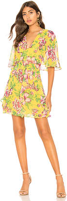 BCBGMAXAZRIA Mabel Floral Dress