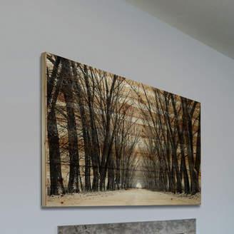 Parvez Taj Mercury Row 'Tree Path' by Painting Print on Natural Pine Wood