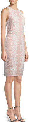 Tadashi Shoji Sleeveless Lace Applique Sheath Dress