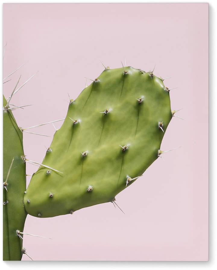 Southwest Cactus Closeup Wrapped Canvas