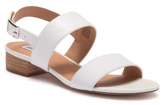 Steve Madden Garcia 2 Leather Sandal
