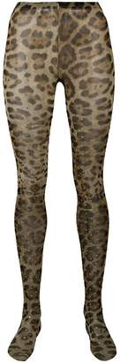 Dolce & Gabbana leopard tights