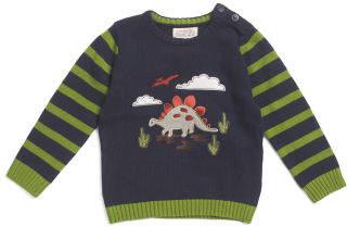 Toddler Boys Dinosaur Striped Sleeve Sweater