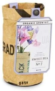 Sweet Pea Organic Grow Kit