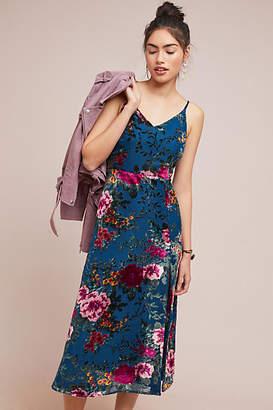 Yumi Kim Socialite Floral Dress