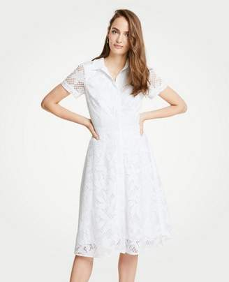 Ann Taylor Petite Floral Lace Shirtdress