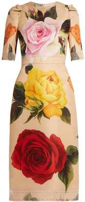 Dolce & Gabbana Rose-print silk-blend organza midi dress