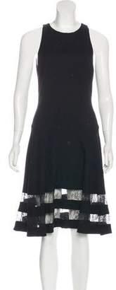 Jason Wu Lace-Trimmed Sleeveless Dress
