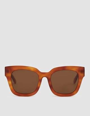 Need Saga Sunglasses in Tortoise Light