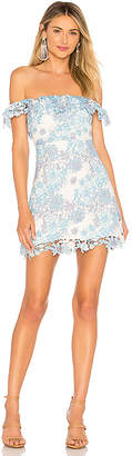 Lovers + Friends Lilo Mini Dress