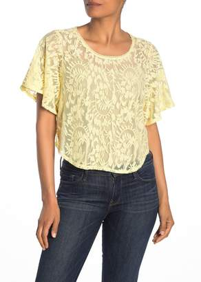 CODEXMODE Embroidered Mesh Lace Crop Top