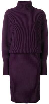 Victoria Beckham Victoria ribbed knit turtleneck dress