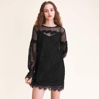 Maje Short lace and dotted Swiss dress
