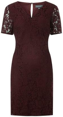 Dorothy Perkins Womens **Tall Berry Lace Shift Dress