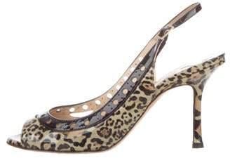 0e364fc4fe7 Jimmy Choo Leopard Slingback Sandals