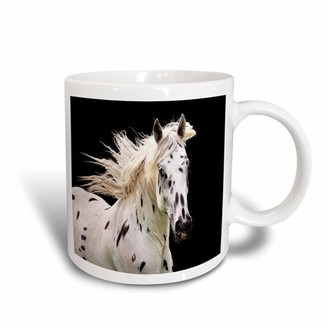 3dRose Beautiful Appaloosa Horse, Ceramic Mug, 15-ounce
