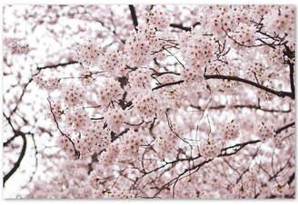 Ariane Trademark Global Moshayedi 'Cherry Blossoms' Canvas Wall Art
