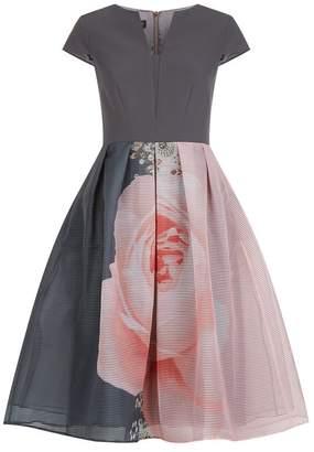 Ted Baker Noura Blenheim Palace Midi Dress