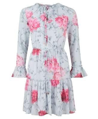 6fb0aab8d3 Ted Baker Eriin Chiffon Babylon Pinny Dress Colour: GREY, Size: 12