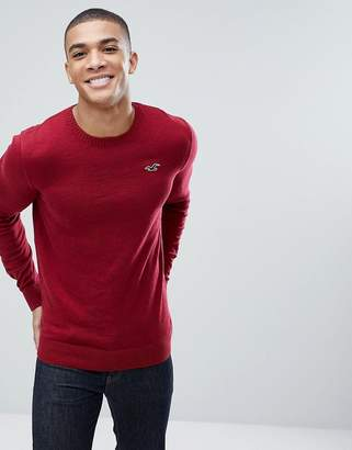 Hollister Billy Crew Neck Knit Sweater Seagull Logo in Red