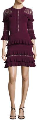 Elie Saab Ruffled Lace-Inset 3/4-Sleeve Dress, Cherry