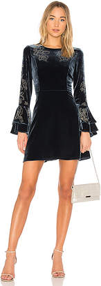 Parker Donatella Dress