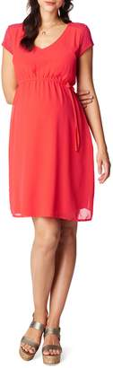 Noppies Noelle Maternity Dress