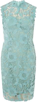 Dorothy Perkins Womens **Showcase Green 'Demi' Sage Bodycon Dress