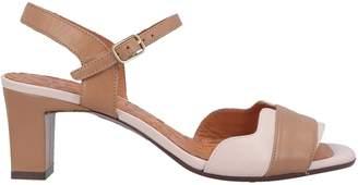 Chie Mihara Sandals - Item 11644417TT