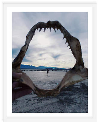 One Kings Lane Kevin Russ - Shark Jaw at Dry Lake Bed Art