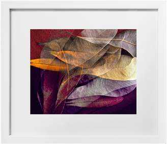 Corban & Blair Howard Gwynne Orange Leaves 1 Print in Slim Box Frame
