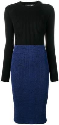 Sportmax Code Tamigi dress